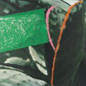 John Baldessari – Cactus (#4) aus: 2623 Third Street, Santa Monica