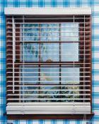 "Roe Ethridge – ""Window with Bahama Blinds. Hidden Branches"""