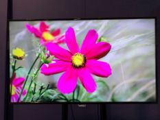 "Phillips 50"" 4K LED Screen with Wall & Desk Mount, IEC and Remote Control,4 x HDMI,USB, For"