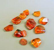 Sammlung von Naturbernsteinen Die Sammlung besteht aus 12 Bernsteinen, poliert, mit mi