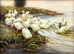 Enten am Ufer