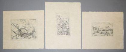 Paul Eliasberg, Landschaften & Naturausschnitte, 9 signierte Radierungen, o. Ra