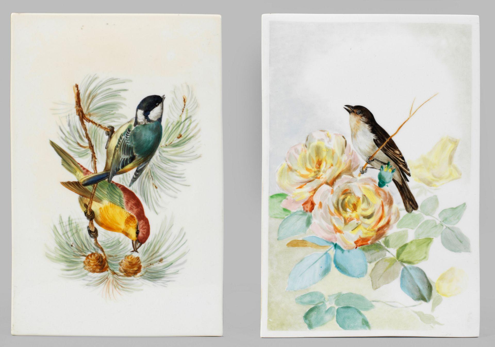 Paar Bildplatten mit Vogelmotiven