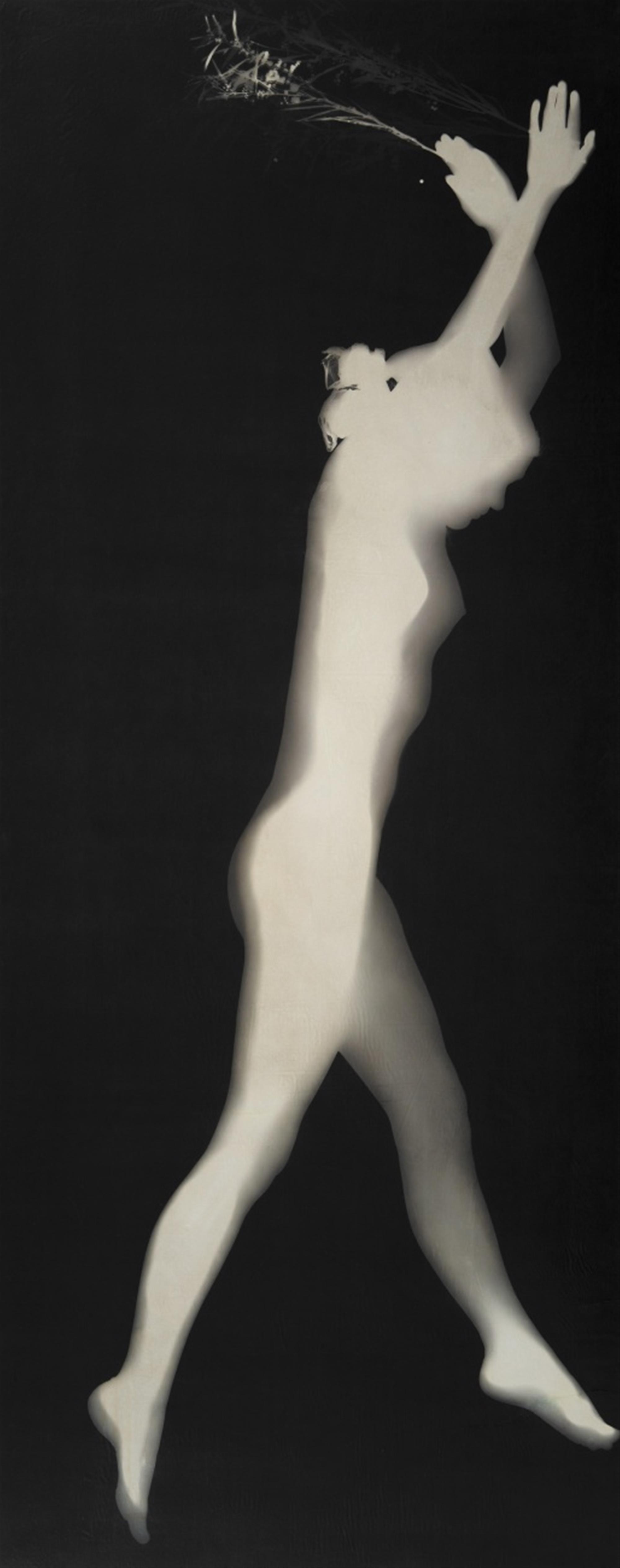 Floris M. Neusüss<BR>Untitled