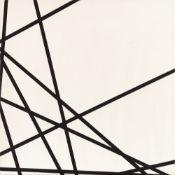François Morellet<BR>10 lignes au hasard, no.75086, no.3