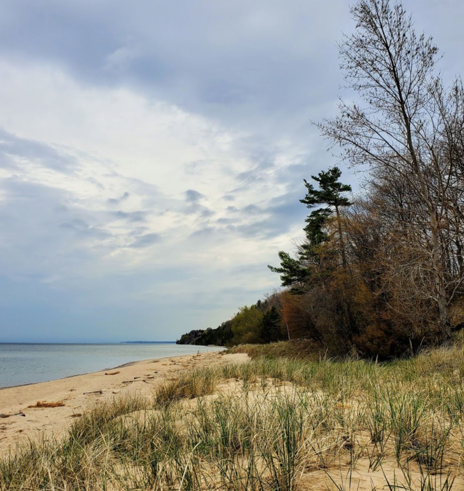 Showstopper on Lake Michigan's Coastline at Manistee! Beautiful property! Magnificent view! - Image 9 of 9