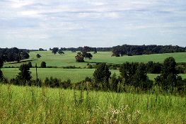 Beautiful Lot in Jasper County!