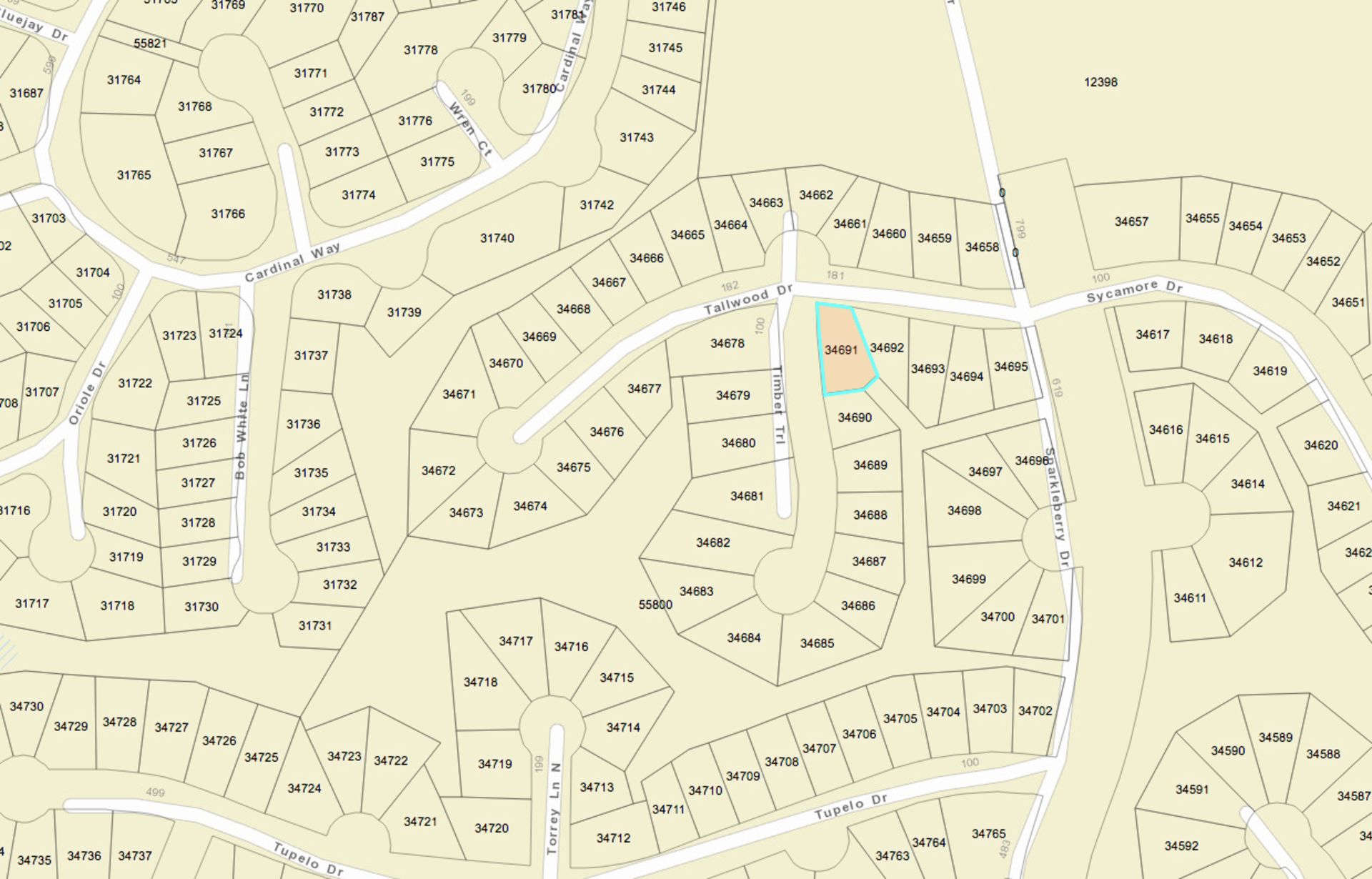 Build on Your Beautiful Lot in Texas Pineywoods! - Image 2 of 7