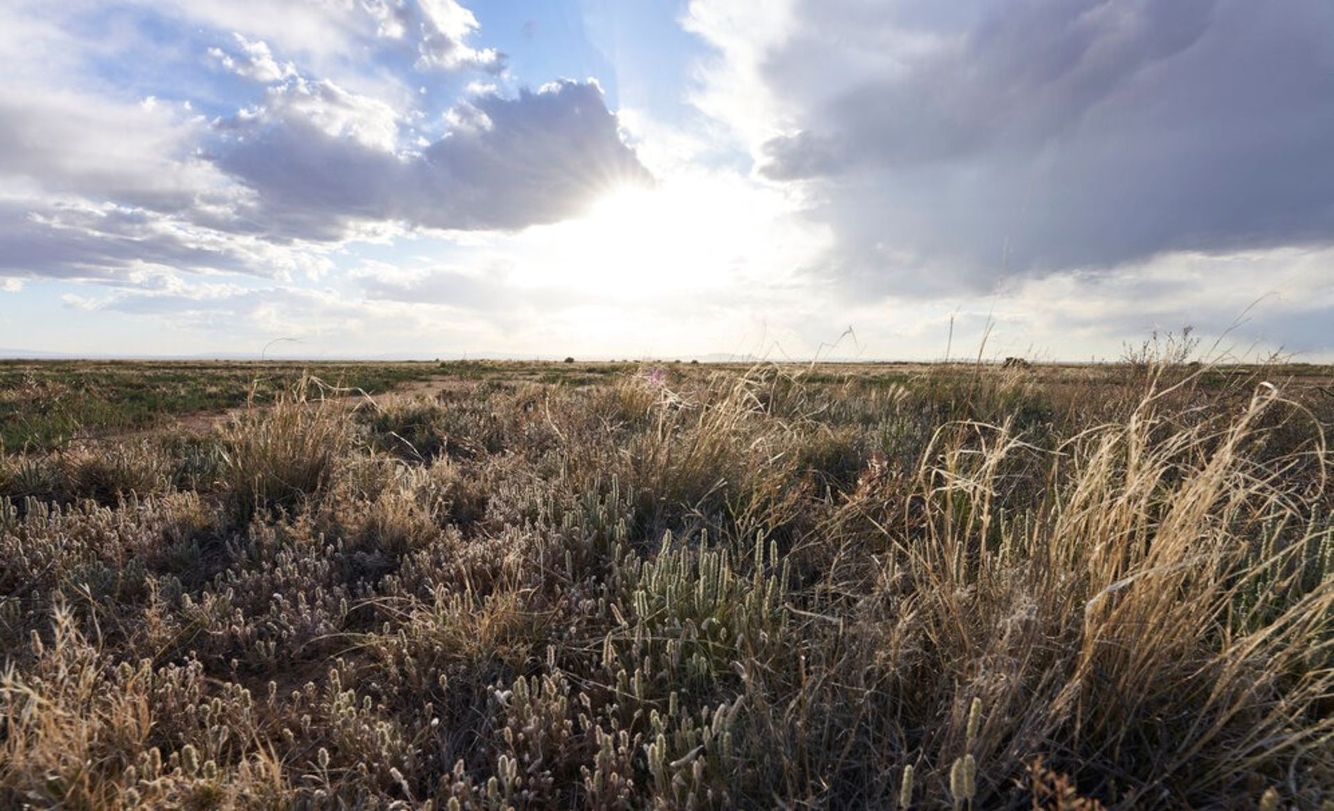 Own the Great Outdoors in Booming Valencia County, New Mexico!