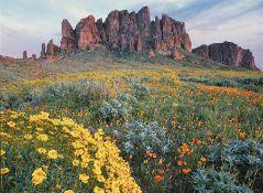 2.5 Acres of Beautiful Views in Navajo County, Arizona!