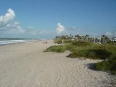 Own Property in the Sunshine State!