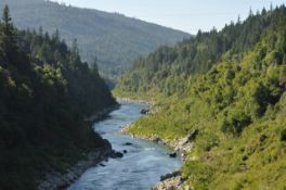 Scenic Wooded Lot in Northwestern California on the Klamath River!