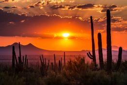 Do You Love Small-Town Charm? Then You'll Love Cochise County, AZ!