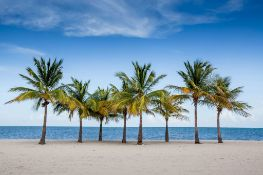 Change Your Lifestyle in Florida!