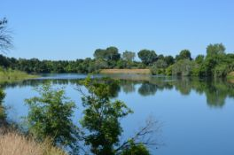 Build Your Home on Over 1.5 Acres in this Northern California Paradise!