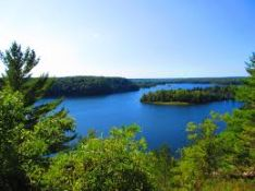 Own Land in Lake County, Michigan's Recreational Outdoor Paradise!