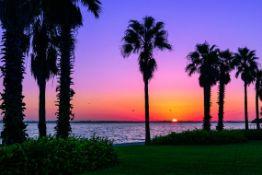 Always Sunny in Florida!