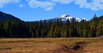 Build Your Home on Over 1.33 Acre Lot in this Northern California Paradise!