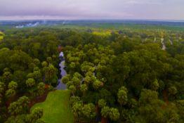 Over Half Acre in Peaceful, Polk County, Florida!
