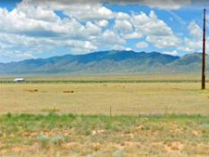 Quarter of an Acre in Sunny New Mexico!