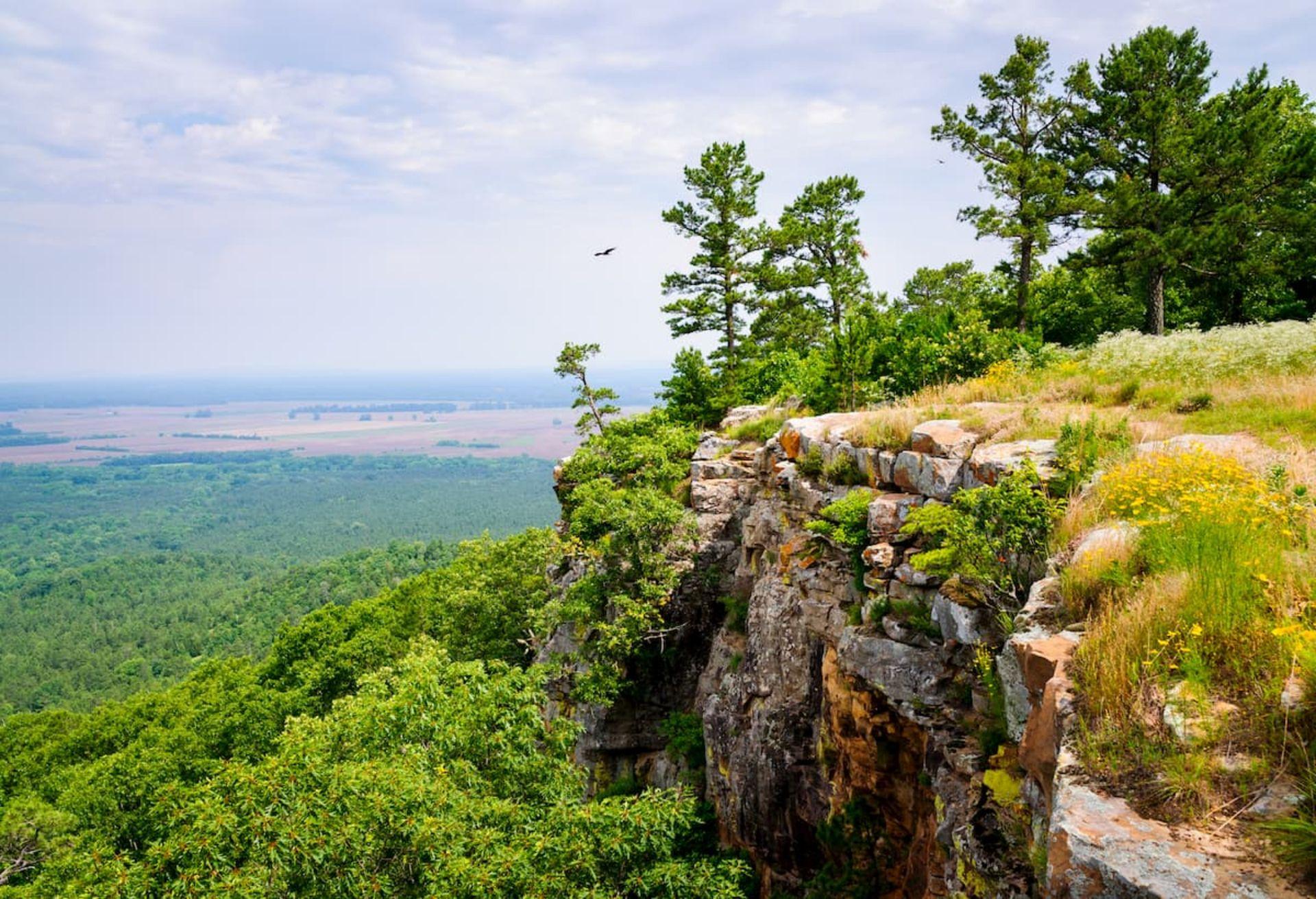 Enjoy a Vibrant Arkansas Lifestyle At Holiday Island in the Ozarks!
