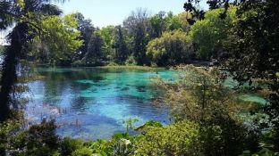 Near Lakes, Lakes, and More Lakes in Sunny Florida!