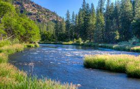 Scenic Wooded Lot in Northwestern California Near the Klamath River!