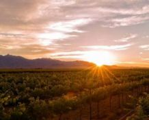 Enjoy the Small-Town Charm in Cochise County, Arizona!