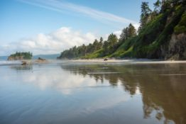 A Few Minutes Stroll to a Pacific Ocean Beach, in the Evergreen State!