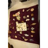 A good collection of costume jewellery brooches as well as pin badges (50+).