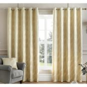 Sarcoline Eyelet Room Darkening Curtains - RRP £112.50