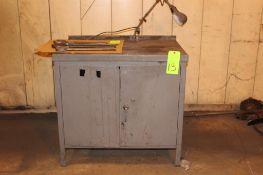 Steel Cabinet w/ Light