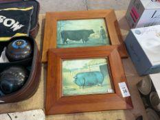 VINTAGE COW AND BOAR FRAMED PRINTS