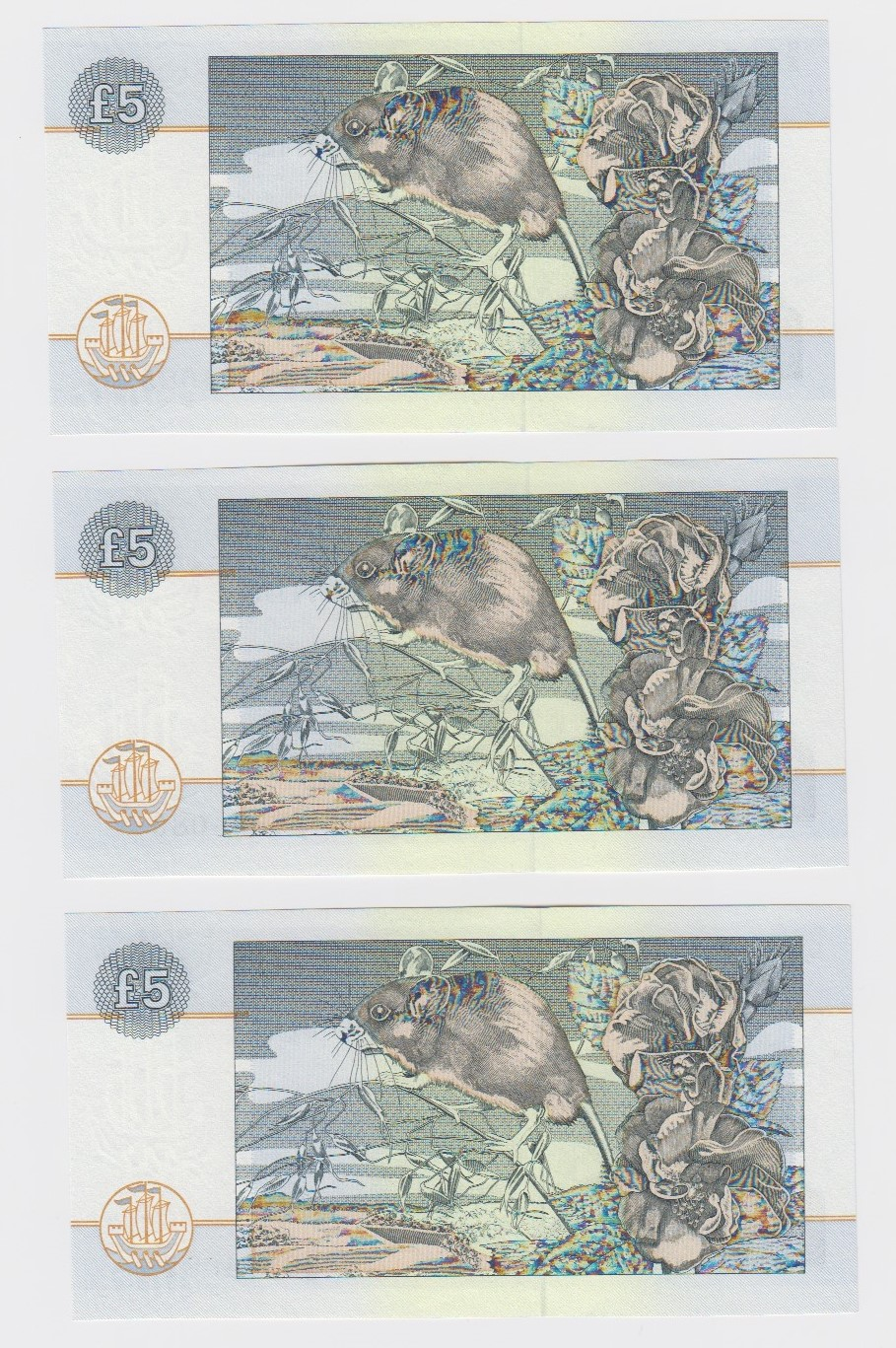 Scotland, Clydesdale Bank 5 Pounds (3) dated 21st July 1996, a consecutively numbered run - Image 2 of 2