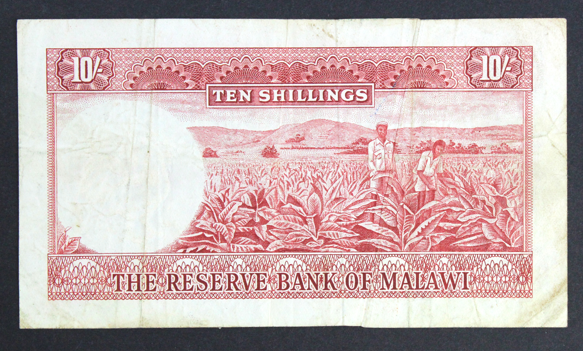 Malawi 10 Shillings ERROR note dated 1964, a strong GUTTER FOLD error, rare first issue signed - Image 2 of 2
