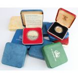 GB Royal Mint cased: Silver Proof Crowns (7), and Silver Proof £1 coins (3)