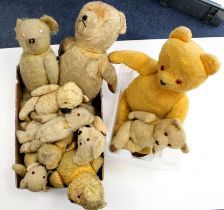 Bear Interest- From a single owner collection. Bears to include early humped and mohair examples (
