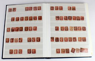 GB - blue stockbook of 1d Reds perf and imperf, many perf stamps identified by plate numbers, some