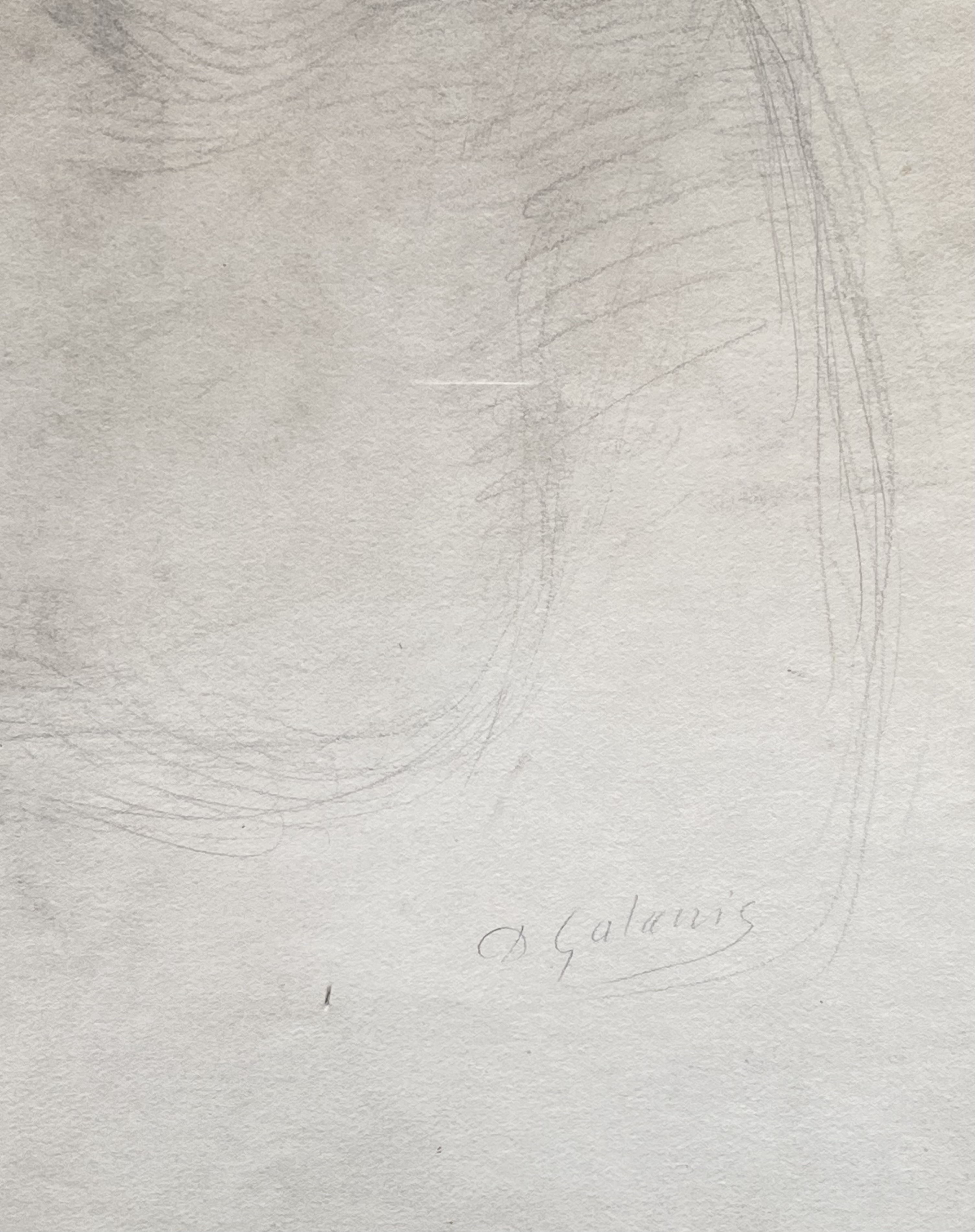 Dimitrios Galanis (Greek, 1880-1966) (AR), Portrait of a young lady, charchoal on paper, 62 x 38 cm. - Image 2 of 2