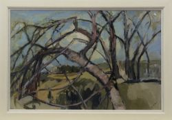 A WOOD IN WINTER, AN OIL BY AGNES WATT