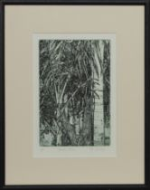 MEXICAN PALMS, AN ETCHING BY PAT CROMBIE