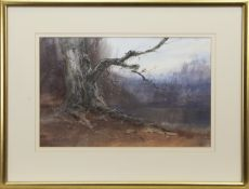 THE LONLEY BRANCH, A MIXED MEDIA BY IAIN ROSS