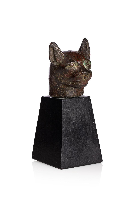 Tête de chatte BastèteLes oreilles portaient autrefois des boucles d'oreilles en or Bronze à