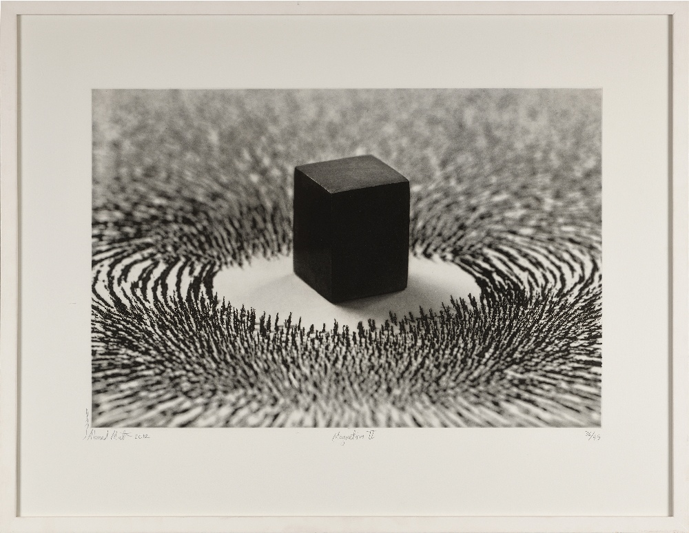 Ahmed MATER (Arabie Saudite 1979)Magnetism II, 2012Photogravure 62 x 81 cm (la planche) 42 x 63 - Image 2 of 2