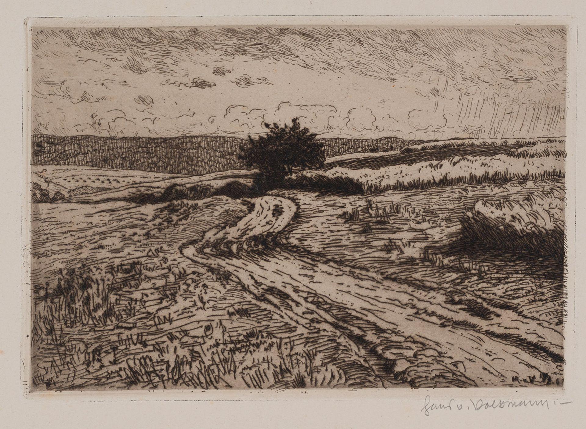 Volkmann, Hans Richard von
