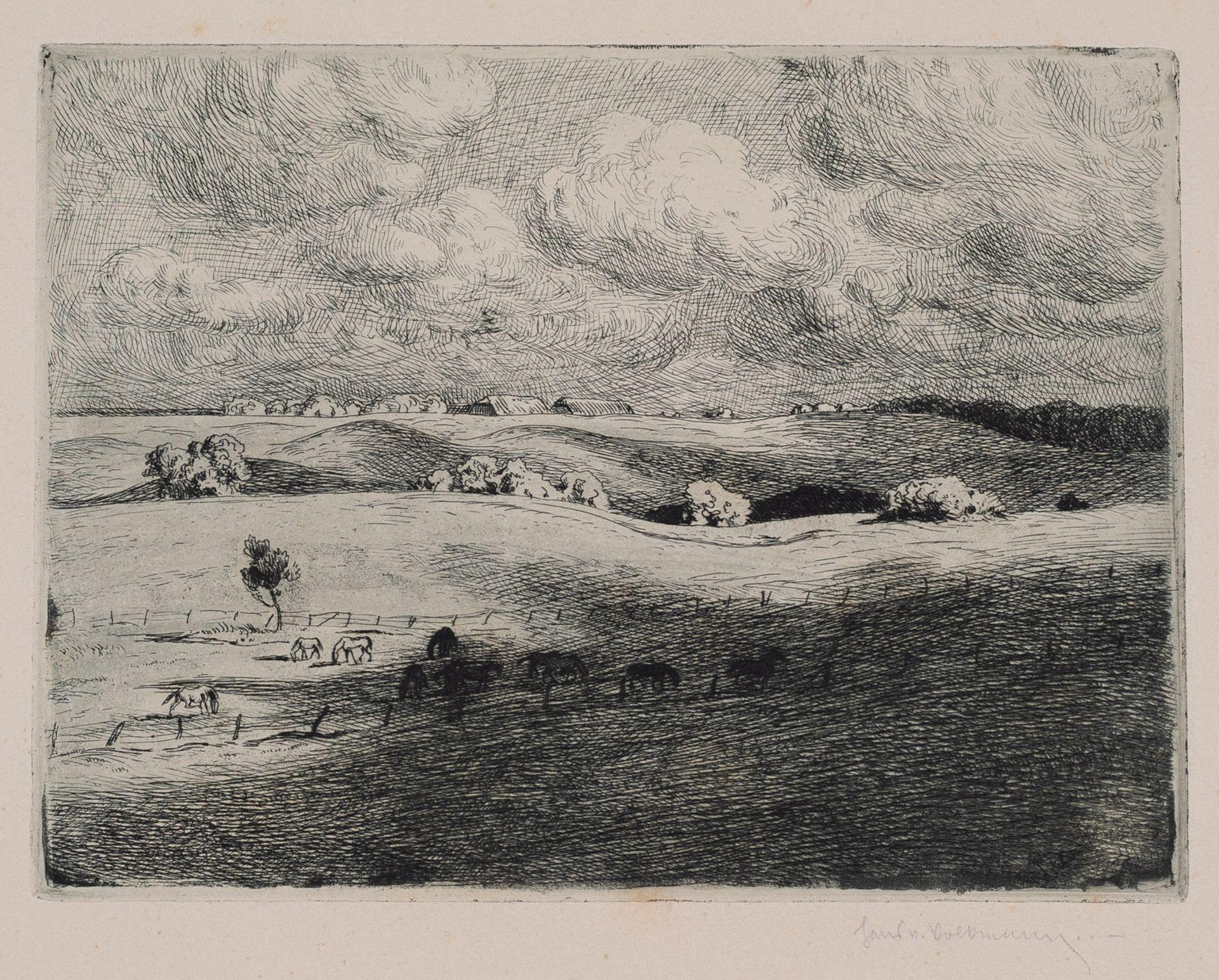 Volkmann, Hans Richard von - Image 3 of 10