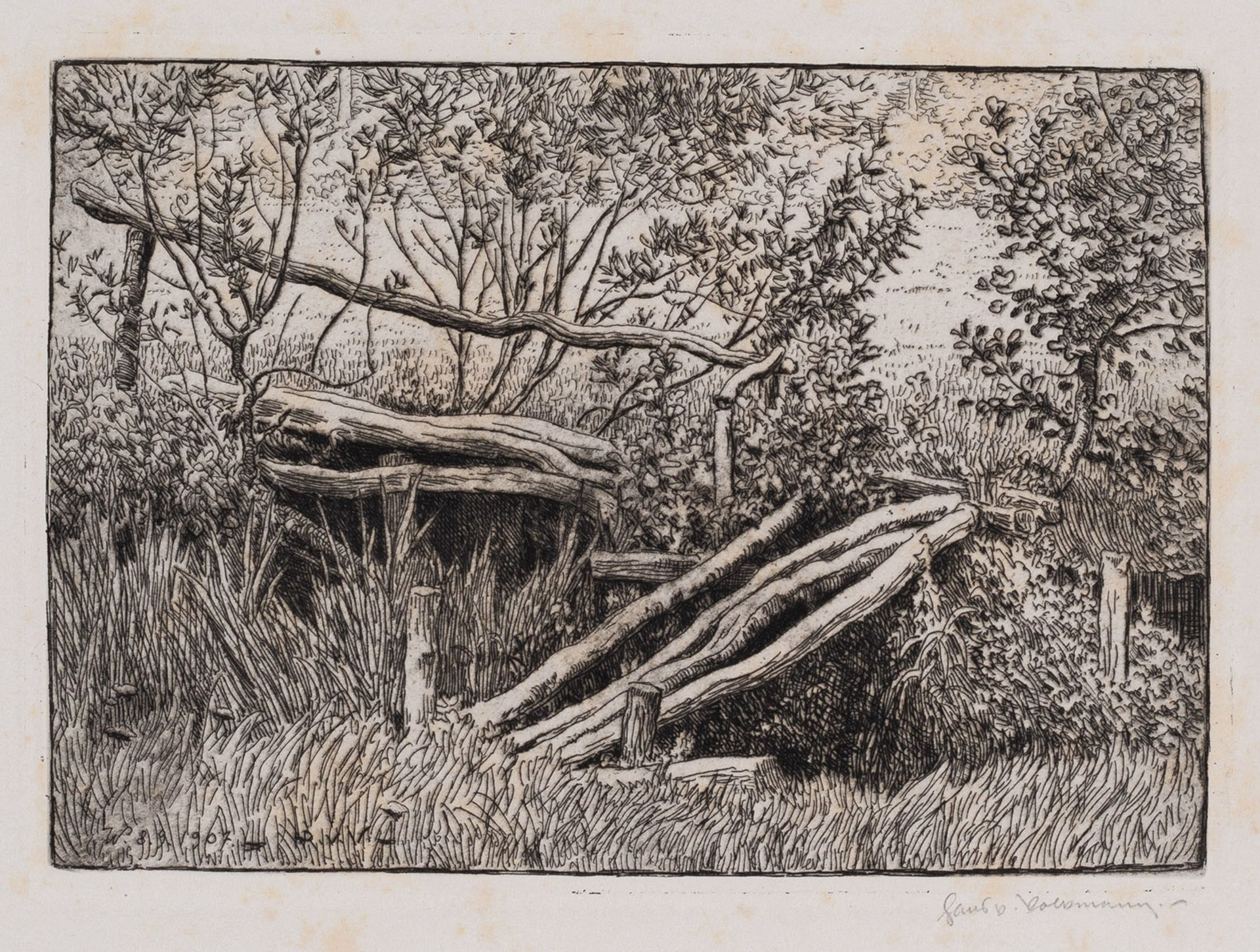 Volkmann, Hans Richard von - Image 5 of 10