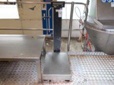 MWS platform scale