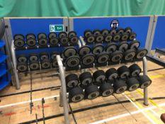 Techno gym Dumbbell racks