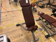 Technogym weight bench